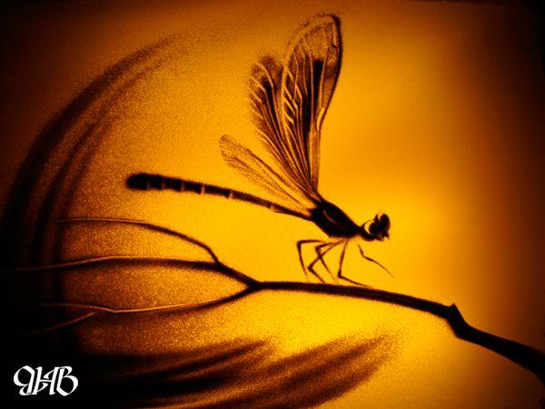 Песочный рисунок Надежды Валовой.